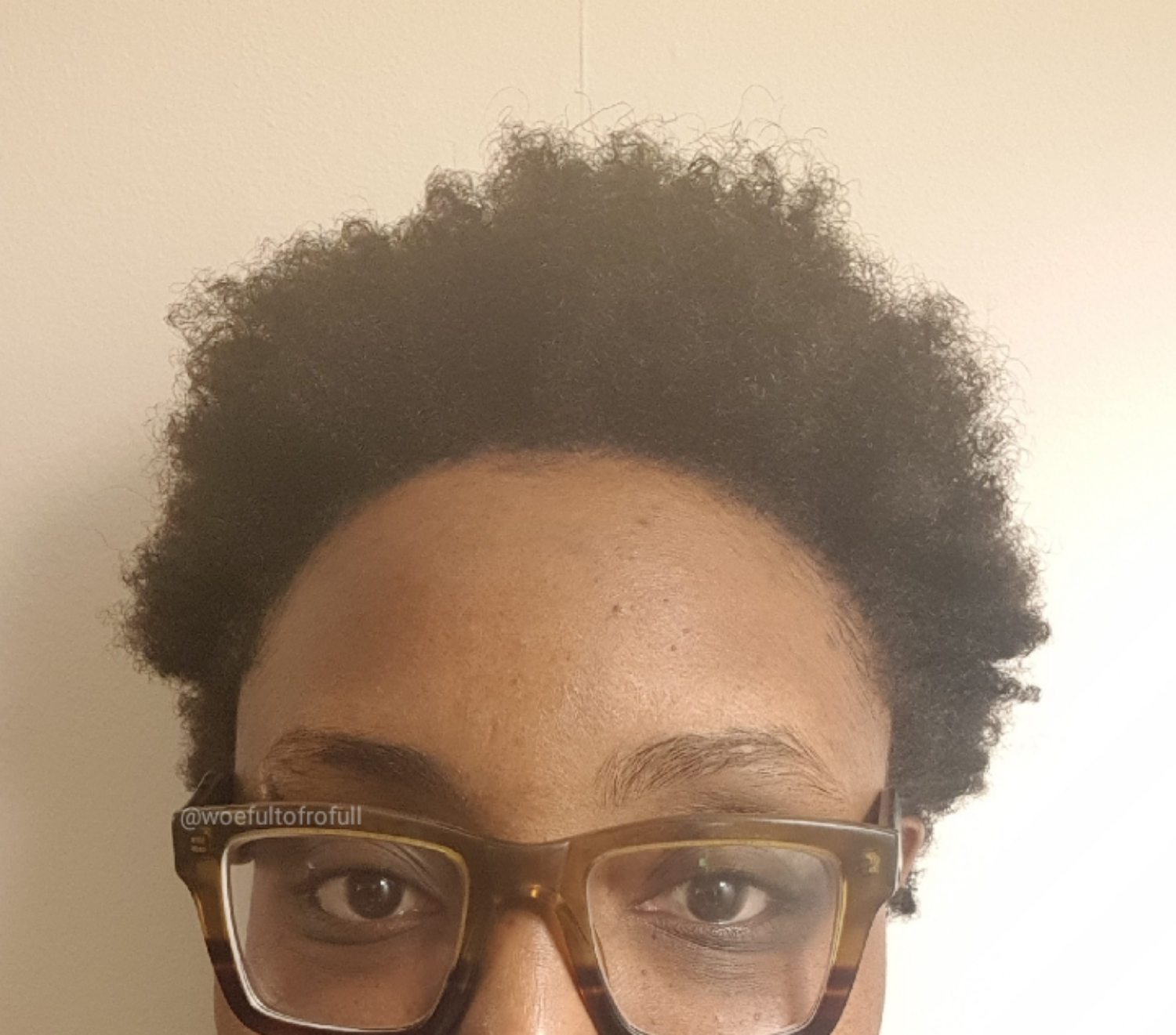 woeful to frofull, afro hair, freshly washed